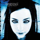 Evanescence - Fallen (LP)