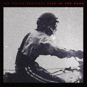 Felice Brothers - Life In The Dark (LP)