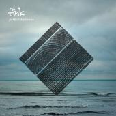 Fink - Perfect Darkness (LP) (cover)
