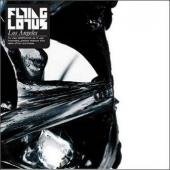 Flying Lotus - Los Angeles (cover)