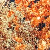Future Islands - In The Fall (Copper Vinyl) (LP)