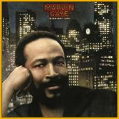 Gaye, Marvin - Midnight Love (LP) (cover)