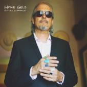 Gelb, Howe - Future Standards (LP)