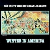 Scott-heron, Gil - Winter In America (cover)