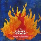Gipsy Kings - Savor Flamenco (cover)
