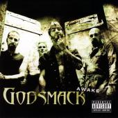 Godsmack - Awake (cover)