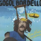 Gogol Bordello - Pura Vida Conspiracy (cover)