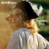 Goldfrapp - Seventh Tree (cover)
