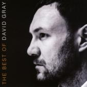 Gray, David - Best Of