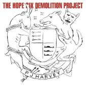 Harvey, P.J. - Hope Six Demolition Project