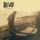 Idlewild - Hope is Important (LP)