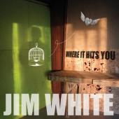 White, Jim - Where It Hits You (cover)