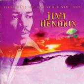 Hendrix, Jimi - First Rays Of The New Rising Sun (LP) (cover)