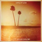 Kings Of Leon - Come Around Sundown (cover)