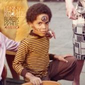 Lenny Kravitz - Black And White America (LP) (cover)