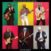 Los Straitjackets - What's So Funny About Peace Love and...