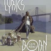 Lyrics Born - Quite a Life (2LP)