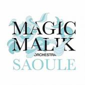 Magic Malik Orchestra - Saoule (cover)