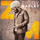 Marley, Ziggy - Ziggy Marley