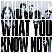Marmozets - Knowing What You Know Now (Blue Vinyl) (LP)