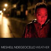 Meshell Ndegeocello - Weather (cover)