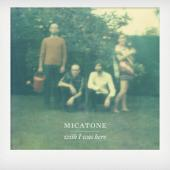 Micatone - Wish I Was Here (cover)