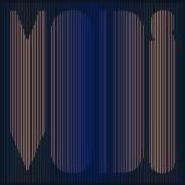 Minus the Bear - Voids (LP)