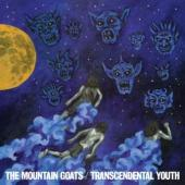 Mountain Goats - Transcendental Youth (cover)