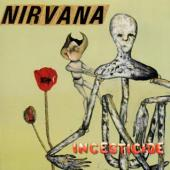Nirvana - Incesticide (cover)