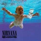 Nirvana - Nevermind (DVD) (cover)