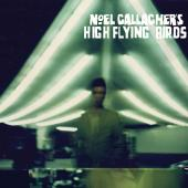 Noel Gallaghers High Flying Birds - Noel Gallaghers High Flying Birds (cover)