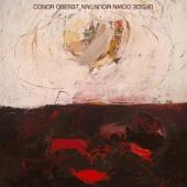 Oberst, Conor - Upside Down Mountain