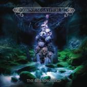 Omnium Gatherum - Burning Cold (2LP+CD)