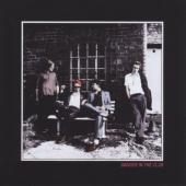 Palma Violets - Danger In The Club (LP)