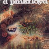 Pink Floyd - A Saucerful Of Secrets (Remastered) (cover)