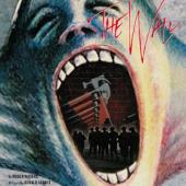Pink Floyd - Wall (DVD) (cover)