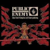 Public Enemy - Evil Empire Of Everything (cover)