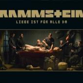 Rammstein - Liebe Ist Fur Alle Da (cover)
