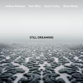 Redman, Joshua - Still Dreaming (LP)