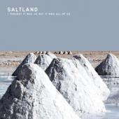 Saltland - I Thought It Was Us But It Was All Of Us (LP) (cover)