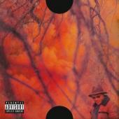 Schoolboy Q - Blank Face LP (LP)