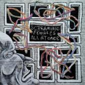 Screaming Females - All At Once (LP+Download)