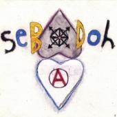 Sebadoh - Defend Yourself (cover)