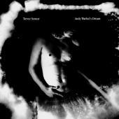 Sensor, Trevor - Andy Warhol's Dream (Silver Vinyl) (LP)