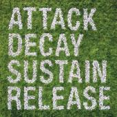 Simian Mobile Disco - Attack Decay Sustain Release (2LP)