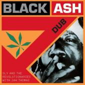 Sly & Revolutionaries - Black Ash Dub (LP)