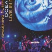 Smashing Pumpkins - Oceania Live In NYC (DVD) (cover)