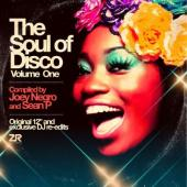 Soul of Disco Vol.1 (Compiled By Joey Negro & Sean P) (2LP)