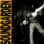 Soundgarden - Louder Than Love (cover)