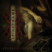 Spineshank - Anger Denial Acceptance (cover)